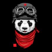 The Happy Adventurer Panda Cool With Helme